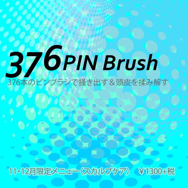 376pinBrush.jpg