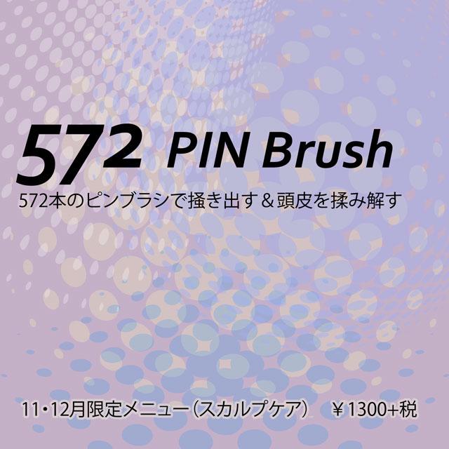 572pinBrush2019.jpg