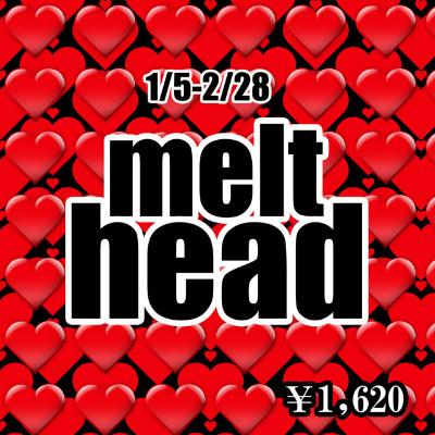 melt-head2.jpg